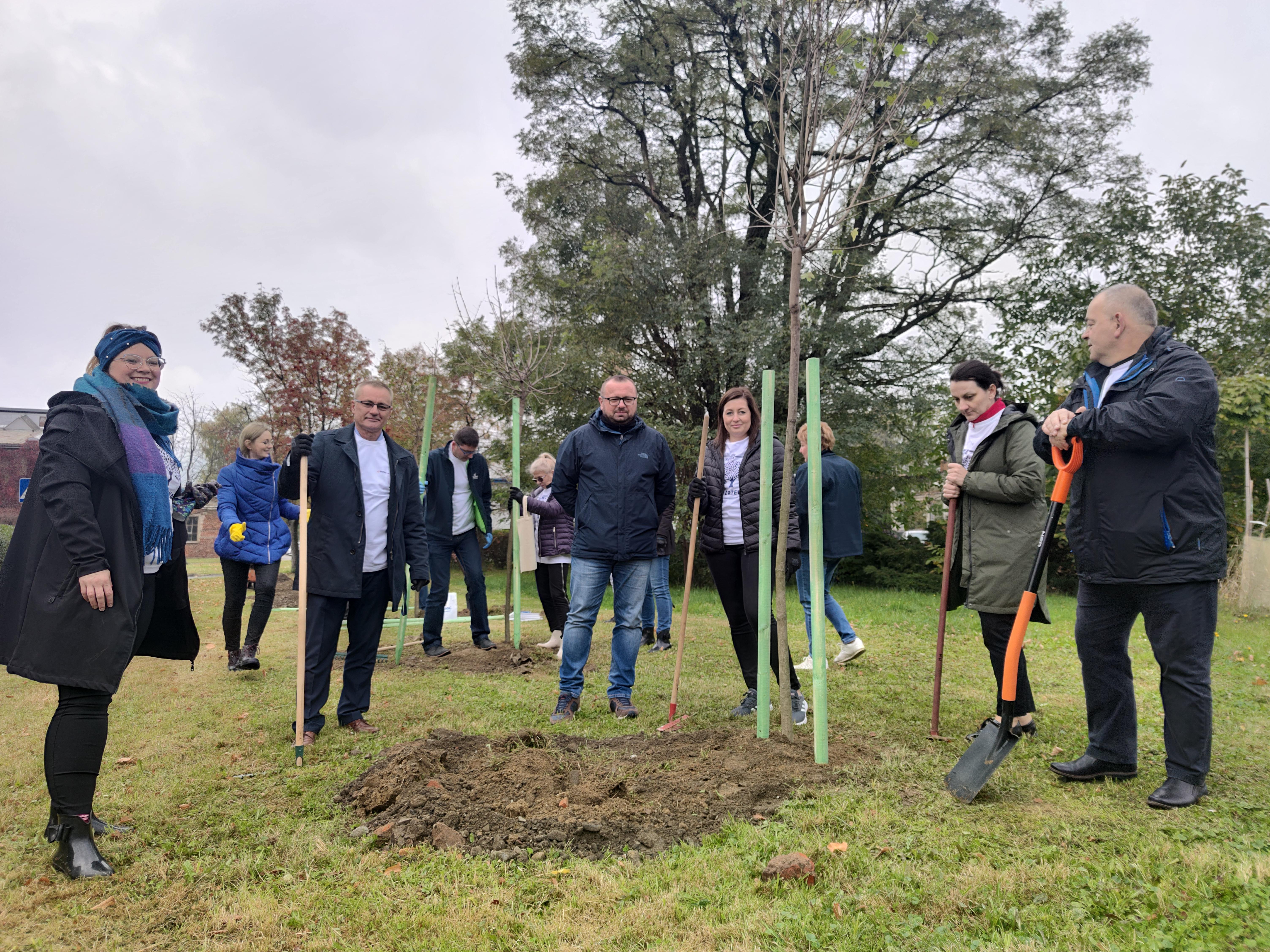 Światowy Dzień Drzewa w naszej spółce